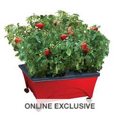 Emsco City Picker Raised-Bed Grow Box