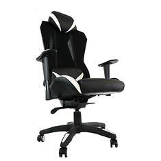 Ergonomic High-Back Gaming Chair