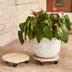 Wooden Plant Caddy 2-Pack