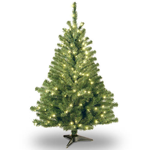 4' Kincaid Spruce with Clear Lights
