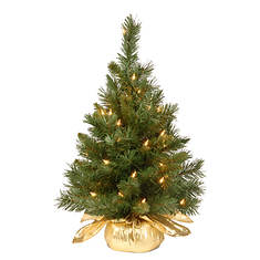 """24"""" Majestic Fir Tree with Lights"""
