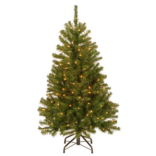 4.5' North Valley Spruce with Lights