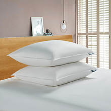 Serta 233-Thread Count White Goose Feather/Down Fiber Pillow 2-Pack