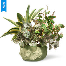 """National Tree Company 10"""" Potted Plant"""