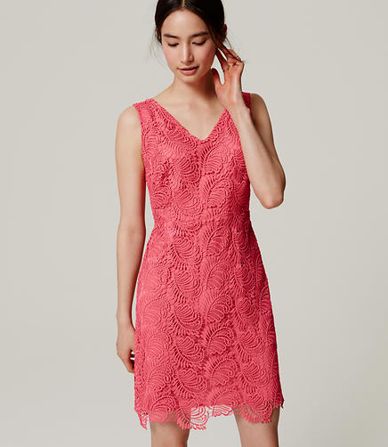 Image of Plume Lace Dress