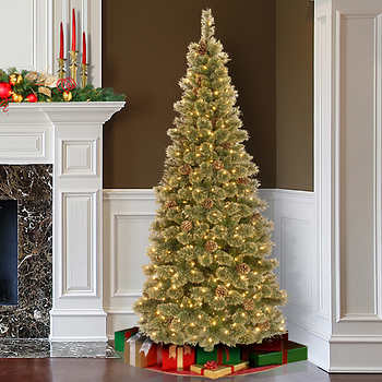 Christmas Tree Roundup w/Trees from $34.97