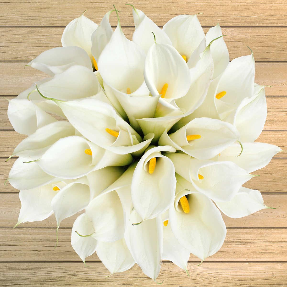 30 Stem Calla Lilies