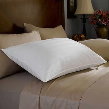 pacific coast platinum pyr n es down pillow. Black Bedroom Furniture Sets. Home Design Ideas