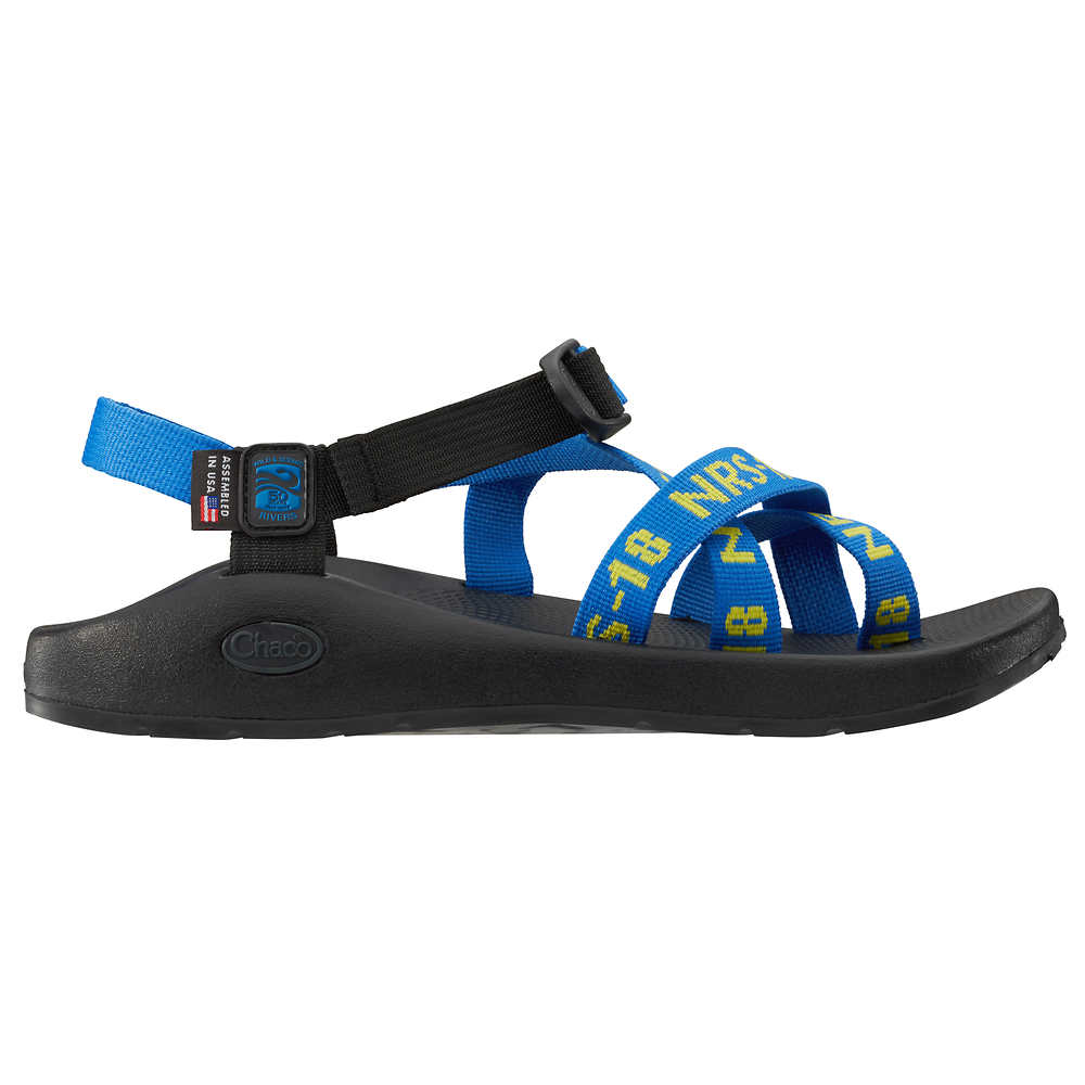 6aa49bc84651 ... Chaco Men s Z 2 Classic Sandals with NRS Strap Webbing (alternate  image) ...