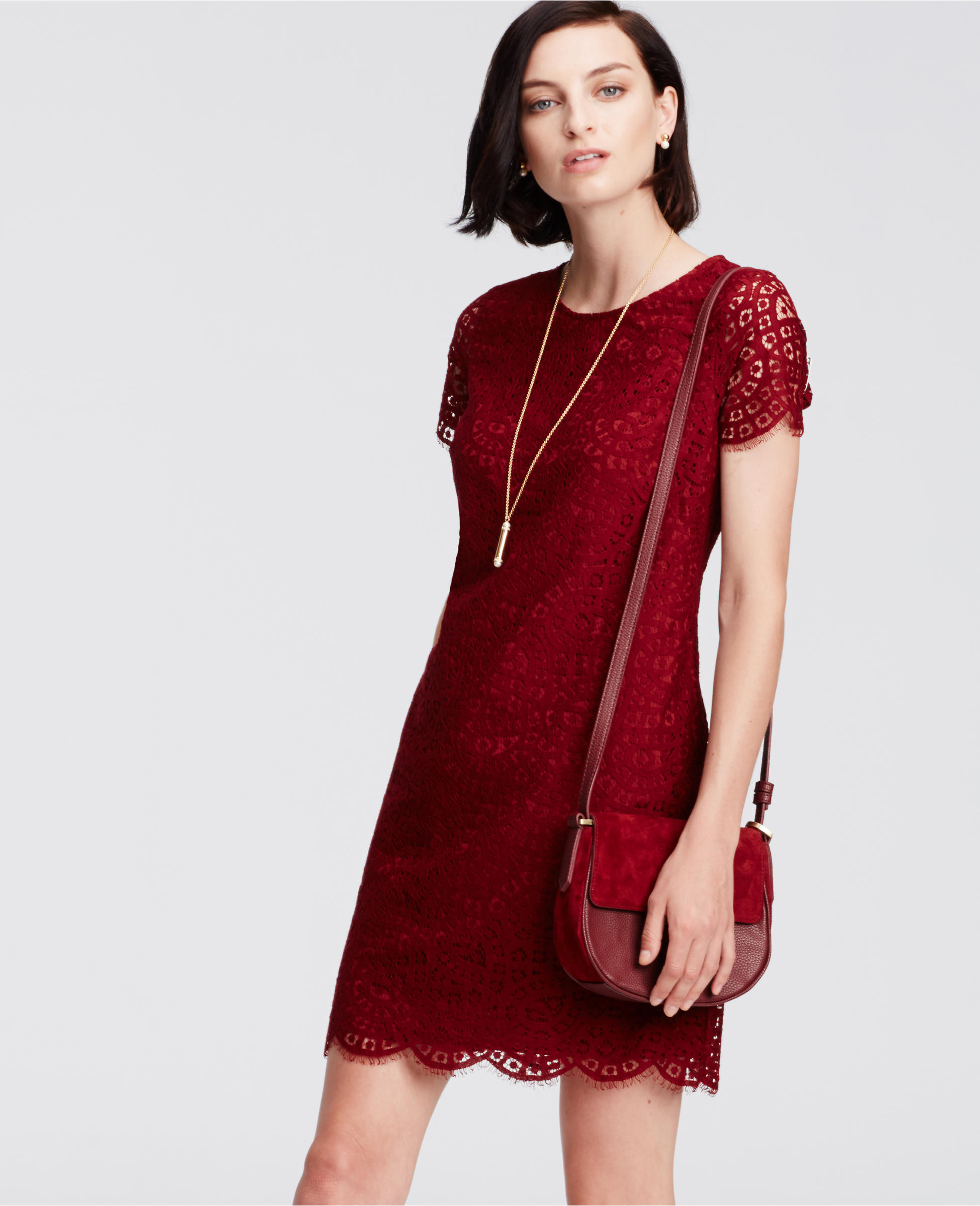 Vicky\'s Daily Fashion Blog: Ann Taylor New Arrivals - Dark Ruby