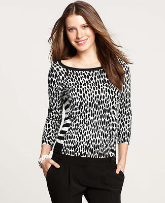 Mixed Leopard Print and Stripe Sweater