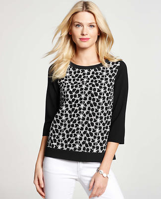 Graphic Dot Top