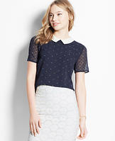 Dot Collared Short Sleeve Top