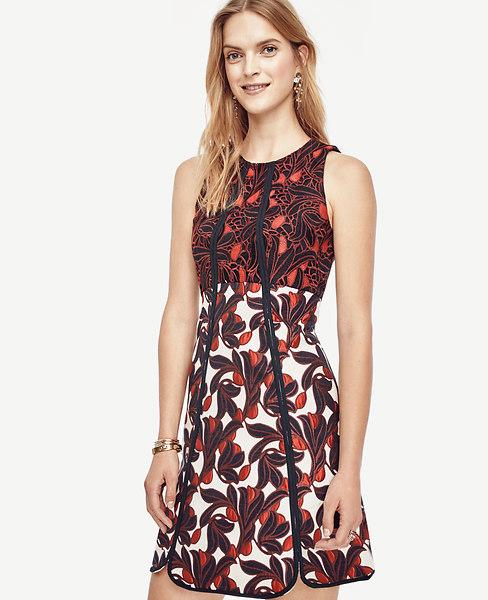 Ann Taylor Vine Lace Jacquard Flare Dress