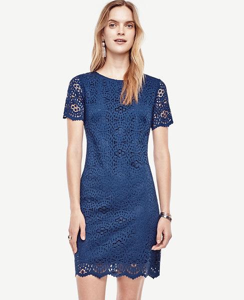 Ann Taylor Mosaic Lace Shift Dress