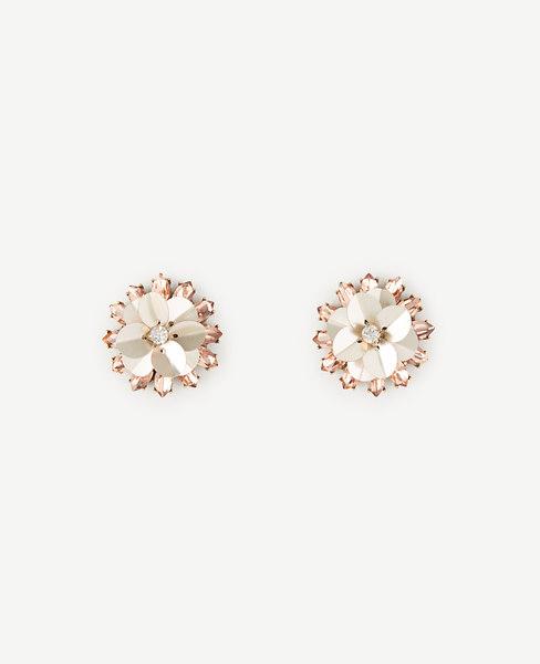 Crystal Sequin Stud Earrings