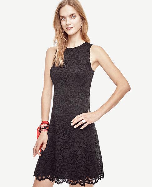 Ann Taylor Petite Lace Flare Dress