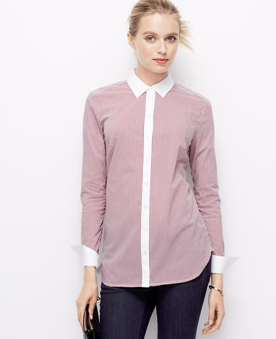 Image of Cttn LS Perfect Shirt in Serene Stripe