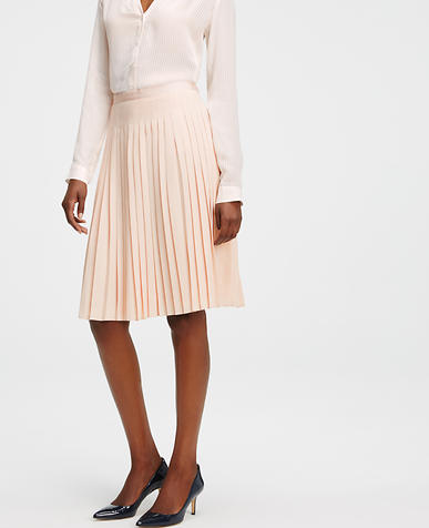 Image of Petite Pleated Full Skirt