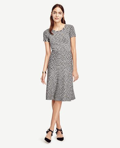 Image of Petite Spacedye Flare Dress