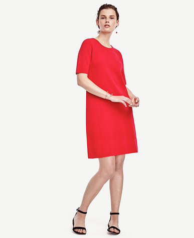 Image of Petite Short Sleeve Sweater Dress