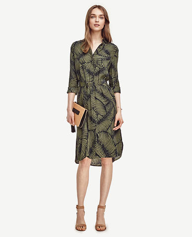 Image of Palm Shirtdress