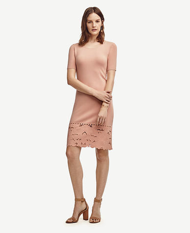 Image of Petite Lace Hem Sweater Dress