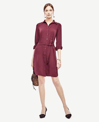 Image of Refined Shirtdress