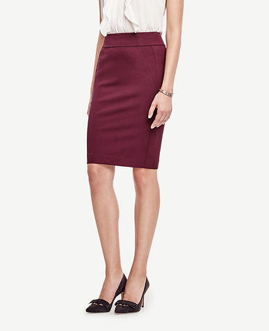 Image of Curvy Seamed Pencil Skirt