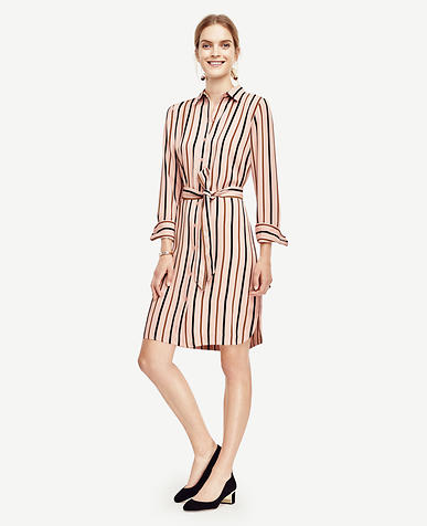 Image of Petite Stripe Shirtdress