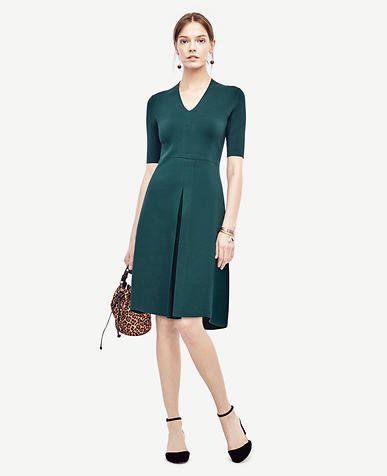 Image of Petite V-Neck Sweater Dress