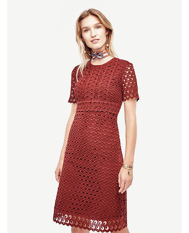 Image of Tulip Lace Dress