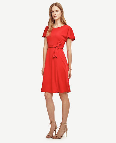 Image of Belted Flare Dress