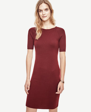 Image of Petite Extrafine Merino Wool V-Back Sweater Dress