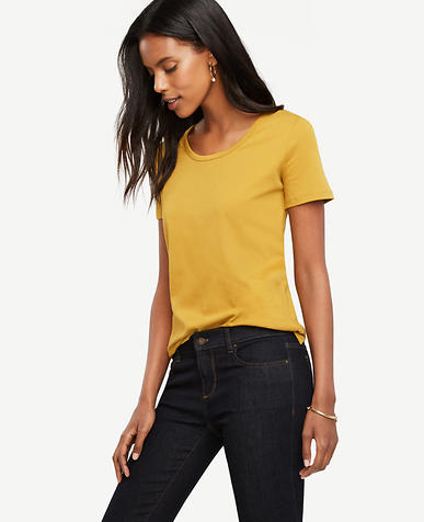 Image of Pima Cotton Scoop Neck Tee