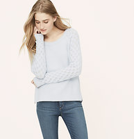 Petite Pointelle Button Back Sweater