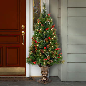 4' Pre-Lit Crestwood Spruce Entrance Tree with Silver Bristle, Cones, Red Berries and Glitter in Bronze Plastic Pot - Clear