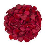 5,000 Rose Petals - Red