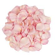 5,000 Rose Petals - Pink