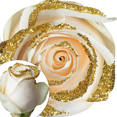 White Glitter Rose, 100 Count - Gold