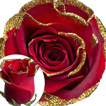 Red Glitter Rose, 100 Count - Gold