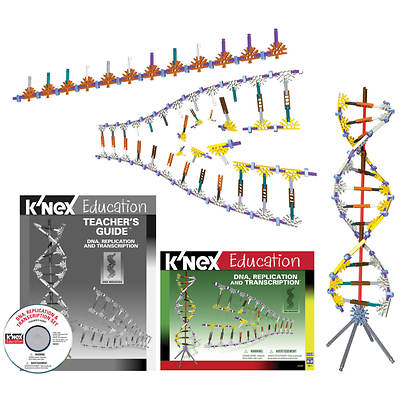 K'NEX Education DNA Replication & Transcription
