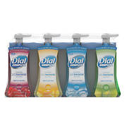 Dial Complete Foaming Antibacterial Hand Wash in Assorted Scents , 4 p