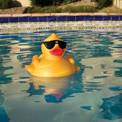 Blue Wave Blue Wave Derby Duck Pool And Spa Chlorinator