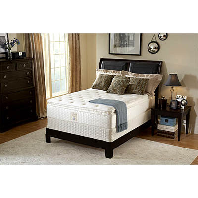 Sealy Ruthwood Plush Euro Pillowtop Queen-Size Mattress Set