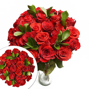 Red Roses, 24 Stems