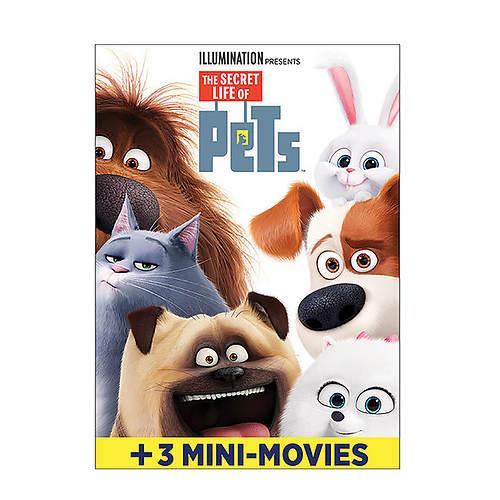 The Secret Life Of Pets Dvd Stoneberry