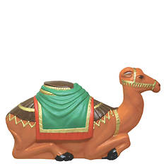 Lighted Camel - Opened Item