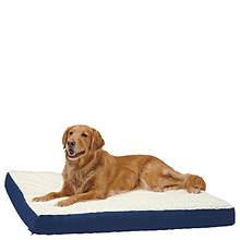 Canine Cushions 27