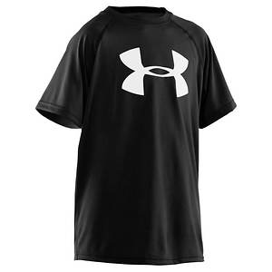 Under Armour Boys' UA Tech(TM) Big Logo Short Sleeve T
